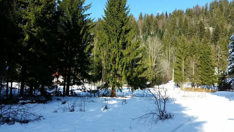 Zemljišta-Bjelolasica4